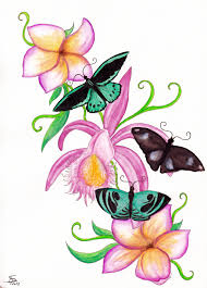 perfect drawings of butterflies and roses 73 with drawings of