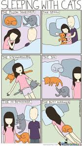 Sleeping Cat Meme - sleeping with cats by mustapan meme center