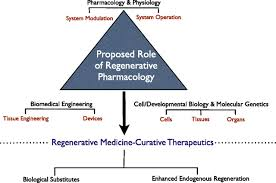 the pharmacology of regenerative medicine pharmacological reviews