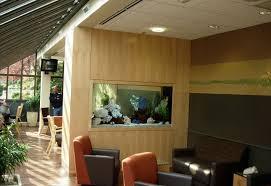 Aquarium Room Divider Clayton Aquariums Outpatient Surgery Room Divider Aquarium