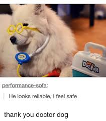 Dog Doctor Meme - 25 best memes about doctor dogs doctor dogs memes