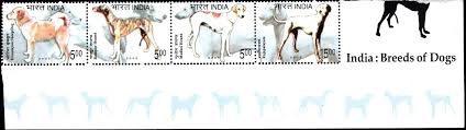 india breeds of dogs 2005