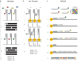 rna seq using next generation sequencing
