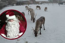 tickets now on sale to meet at cheshire reindeer
