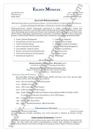 free combination resume template combination resume template for stay at home word docs