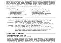 picturesque design ideas information technology resume examples 16