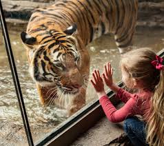 jacksonville zoo and gardens membership offer for nocatee residents