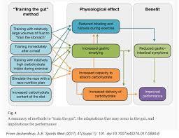 nutrition strategies for health u0026 athletic performance sheila kealey