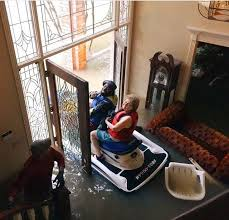 jet ski riding hero rescues grandma from her flooded living room