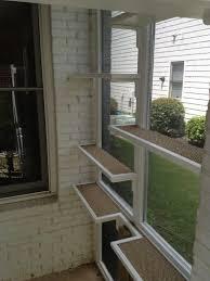 catifying your screen porch fundamentally feline