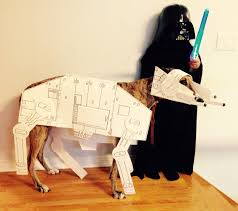 Star Wars Dog Halloween Costumes Halloween Costumes Dogs Healthy Paws
