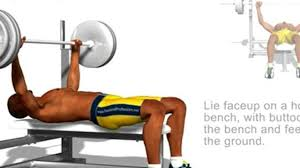 Bench Press Chest Workout Chest Exercises Bench Press Video Dailymotion