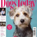 pets issue 15 april june 2017 free pdf magazine