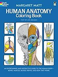 Human Anatomy And Physiology Textbook Online 5 Best Anatomy U0026 Physiology Coloring Books