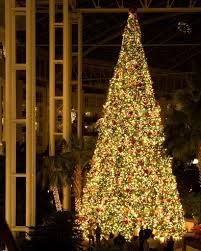 christmas tree inside delta conservatory opryland hotel mapio net