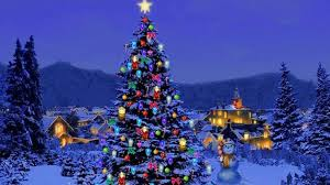 most popular christmas tree lights top 10 most popular christmas trees at affordable prices