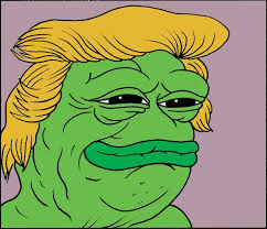 Frog Face Meme - pepe the frog to sleep perchance to meme by matt furie