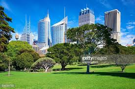 Sydney Botanic Gardens Royal Botanic Gardens Sydney Stock Photos And Pictures Getty Images