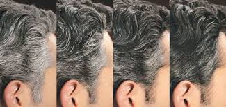 how to bring out the grey in hair control gx shoo just for men