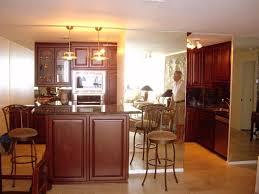 Kitchen Cabinets Discount Discount Kitchen Cabinets Philadelphia U2013 Faced
