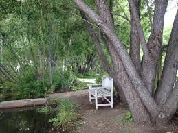 Sawtooth Botanical Garden Serenity Picture Of Sawtooth Botanical Garden Ketchum Tripadvisor