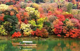 autumn colors all about japan