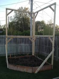 my raised garden bed and hops trellis spent all day on building