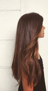 best 25 brown straight hair ideas on pinterest summer 2016 hair