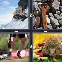 4 pics 1 word answers 6 letters pt 3 what u0027s the word answers