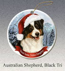 australian shepherd gifts 12 best australian shepherd images on pinterest australian
