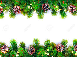 tree with cones border isolated on a white background