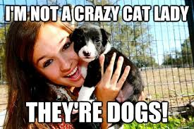 Crazy Lady Meme - i m not a crazy cat lady they re dogs maddie quickmeme