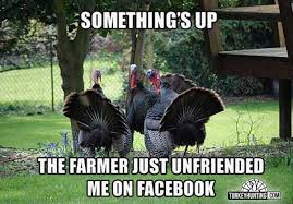 Hunting Meme - the best turkey hunting memes only at turkeyhunting com