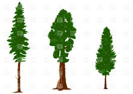silhouettes of pine trees vector clipart image 25448 u2013 rfclipart