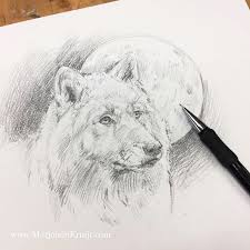 sketching and designing animal art marjolein kruijt