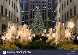 the 80th annual display of the rockefeller center christmas tree