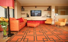 Living Rooms With Area Rugs Orange Shag Rug Red Circles Shaggy Area Rug Unique Brown Orange