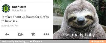 Sloth Rape Meme - i m a sloth too rapeface meme by red sloth 1 memedroid