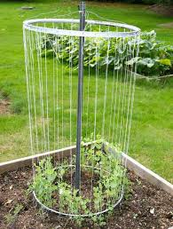 Vegetable Trellis Vegetable Gardening With Mike The Gardener A Really Cool Trellis