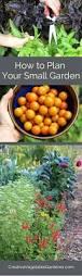 Vegetable Pot Gardening For Beginners Vegetable Gardening For Beginners U2013 Satuska Co
