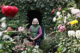 Raleigh Botanical Garden Home Garden Raleigh S Godmother Of Mums Walter Magazine