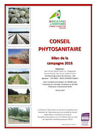 chambre d agriculture 84 calaméo 20170214 actu bilan annuel phyto 2016 ca84