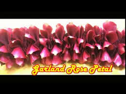 Where To Buy Rose Petals How To Make Garland Rose Petals Easy Method Making Garland Rose