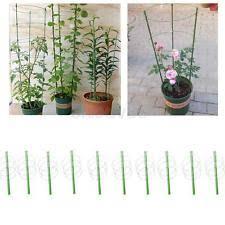 Climbing Plant Supports - bamboo cane garden pyramid obelisk trellis climbing plant support