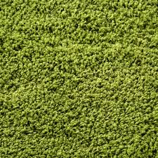 Short Shag Carpet by How To Decorate The Room Of A With Green Shag Carpet