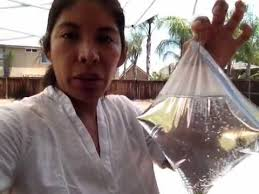 Backyard Fly Repellent Getting Rid Of Outdoor Flies Youtube