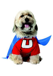 costumes for dogs underdog dog costume