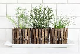 herbs planter 24 indoor herb garden ideas to look for inspiration balcony