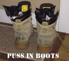 Puss In Boots Meme - 40 funniest boots meme pictures and photos of all the time