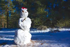 frosty snowman free stock photo public domain pictures